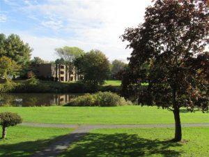 Brandywine Apartments Amherst Ma